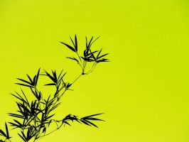 Bamboo Silhouette - blk,yellow by Jagouart