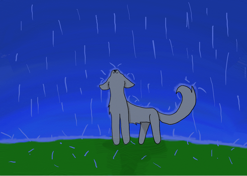 Rain's not that bad by Wolfmink