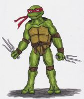 Raphael by piecesoeight