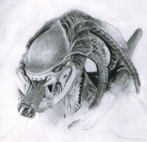Predalien by Green042