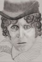 4th Doctor Tom Baker 3 by rhizin