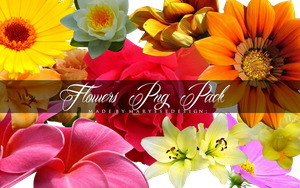 Flowers PNG Pack by Marysse93