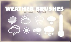 [BRUSHES] FIRSTWORK - WEATHER by Wilaiporn-Ruksakul