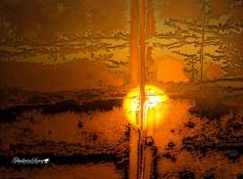 Sunrise in my back window by gigi50