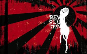 revolution is the answer by elzappo