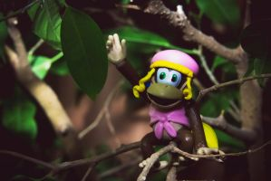 Dixie Kong by JellyBellyNyan
