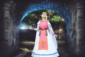 Princess Zelda - A Link Between Worlds by Shappi
