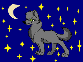 Wolfflight in the nighttime by Chronological-Rising