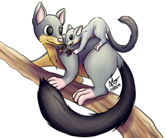 Mothers' day possums by ScurvySimon