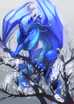 Plum Flower with Dragon by Silce-Wolf