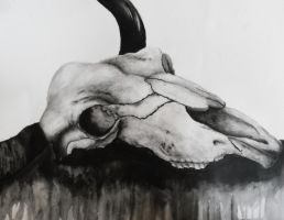 Longhorn skull in Ink by LaurelArtz
