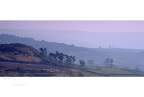 Layers by horai
