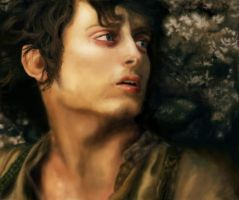 Frodo - finished piece by Lindenlin