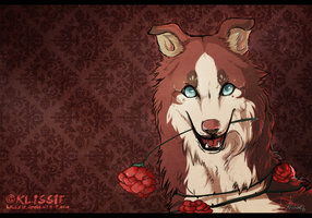 Roses by Klissie