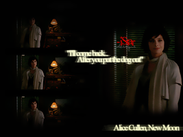 Alice Cullen New Moon by istarsdesigns