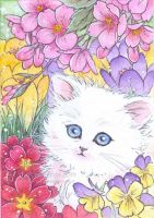 White Kitten in Flowers by aruarian-dancer