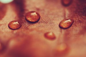 Autumnal drops by Alessia-Izzo