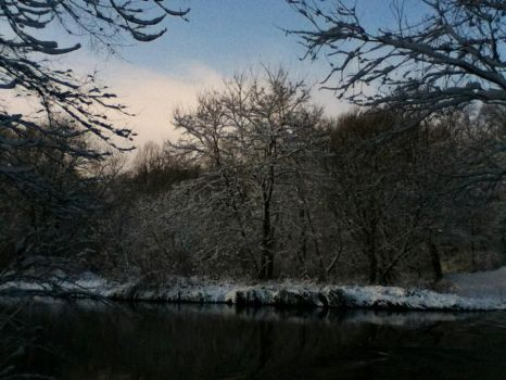 Snowy trees on the river by Misa1510