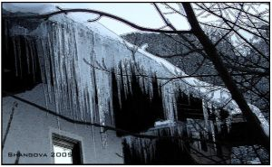 The sence of winter - icicles by Shangova