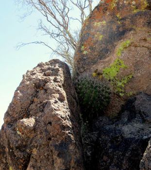 Between a Rock and a Rock by ricken4003