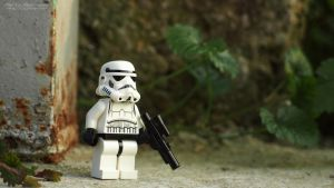 Stormtrooper guarding by MarkoMeic