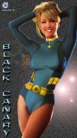 Black Canary - PM by AndrewJHarmon