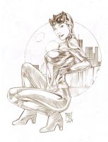 Catwoman by blewh