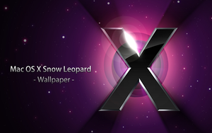 Snow Leopard . Wallpaper by SeaStyle
