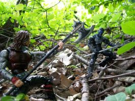 Battle on the Forest Floor by Jarred706