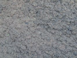 Texture: Dirt by dazzle-stock