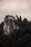 Castle by eror11