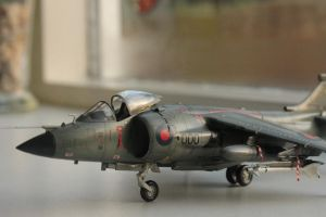 Sea Harrier FRS.1 I by Nexius22