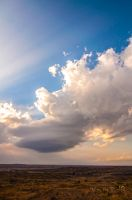 Alanreed, TX LP Supercell by Bvilleweatherman