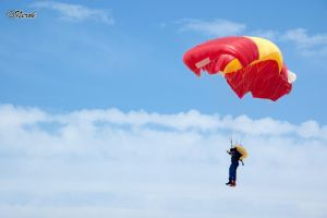 Air festival IV - paratrooper by NetsuK-2