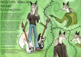 Shilven-anthro reference sheet by FoxInShadow