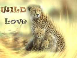 Wild love by Rosshi