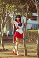 Sailor Mars 2 by foux86
