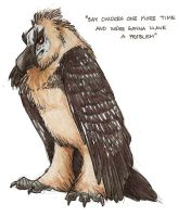 Bearded Vulture by novablue