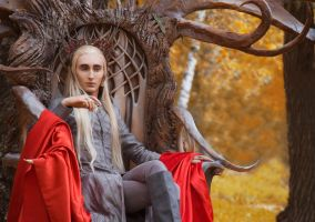 The King of the Mirkwood by Matsue-Faust