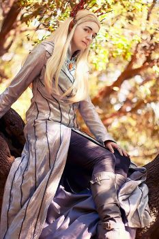 Thranduil, King of the Woodland Realm by MeiCosplay