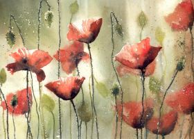 Dancing poppies by nibybiel