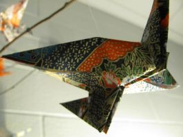 Photography - Paper Cranes #2 (Focus One) by watermelemon