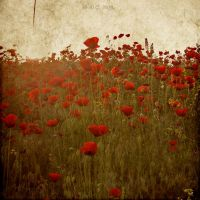 -PoPPieS- by DilekGenc