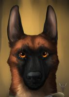 Realistic Klause portrait by TieWolf