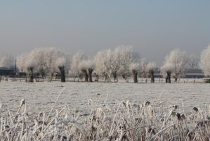 Ice landscape Diksmuide 17 by carinaD-stock