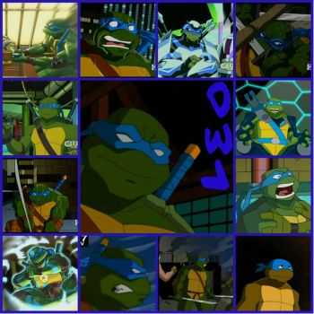 TMNT:: Leo: Collage: 2003 by Culinary-Alchemist