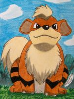 Growlithe by Ash-Misty-Pikachu
