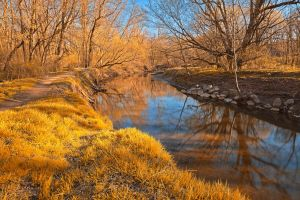Gold Rock Creek by somadjinn