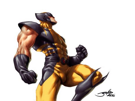 Wolverine IV by julioferreira