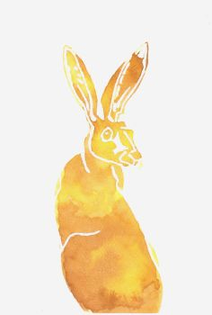 Yellow Hare by SuicideNeil